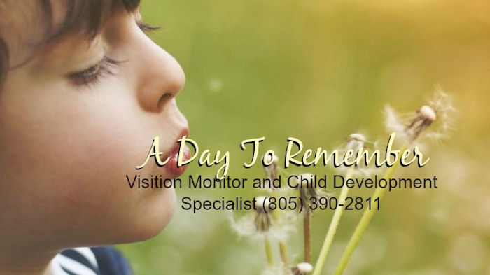 Supervised Visitation Monitor Ventura County